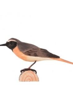 Uccello decorato Commenredstart di Wildlife Garden