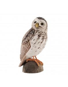 Uccello decorato Little Owl/Civetta di Wildlife Garden